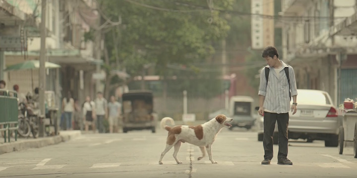 A man and dog on a street